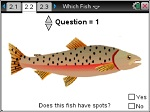Which_Fish